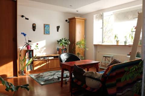 A cozy apartment near the center.