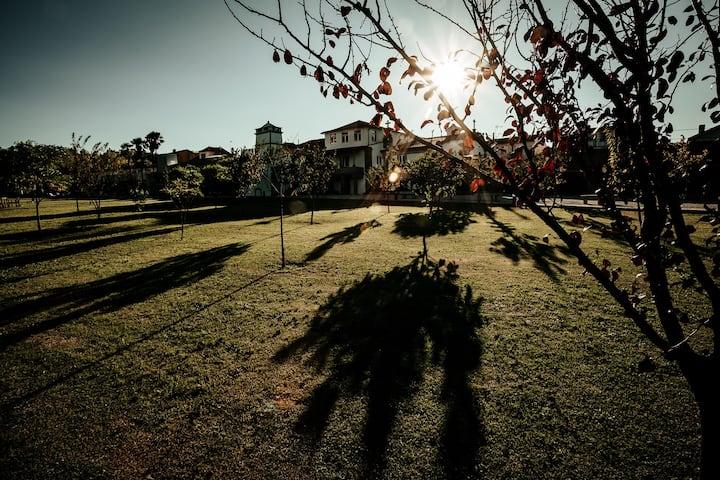 Casa do Lagareiro - Solar de Maceira