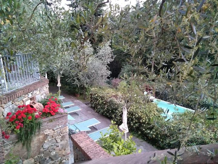 Appartamento rustico con piscina