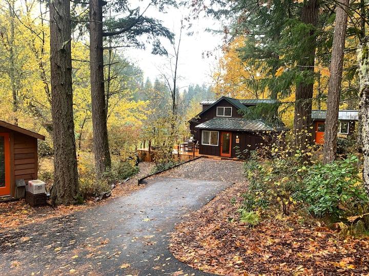 Elsie's View:  Cozy Vintage/Modern Cabin