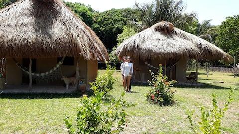 Venha descubri a ilha de Marajó!