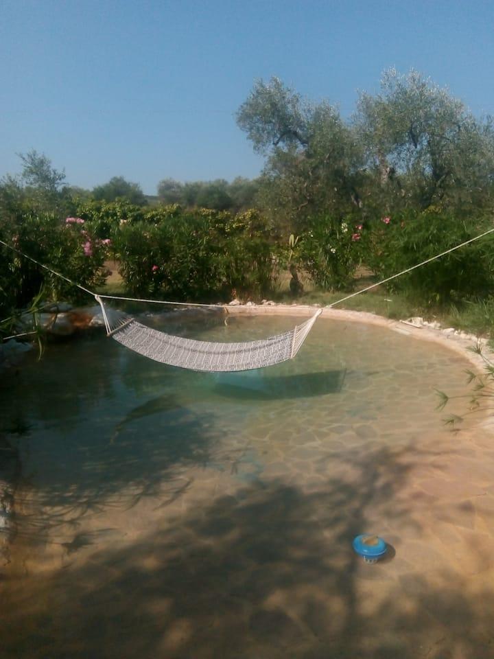 Villa Oleandro Ciccino mit Pool