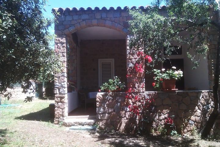 Apartment Mandorlo in villa 80 m from beach
