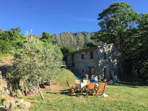 Natura e relax in Val Cichero - Casa indipendente
