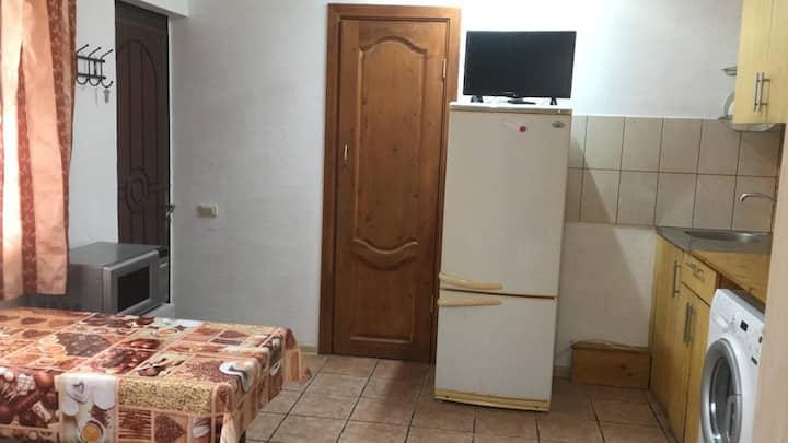 Квартира-студия на двух-трёх гостей