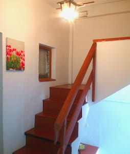 It is a staircase from the street to first level where rooms, Salon, kitchen, dinning room and bathroom are. This picture shows the staircase from 1st. level to the terrace, laundry and small loft bedroom.
