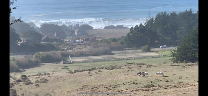 SeaHorse Retreat/Ocean Views/hot tub/dog friendly