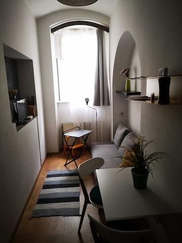 Small studio in the city center