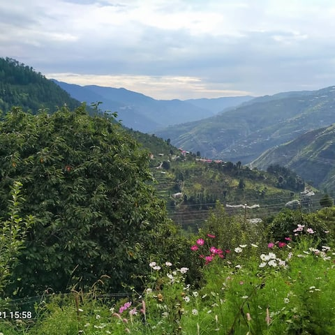 Himalayan Orchard Self-Catering Workation