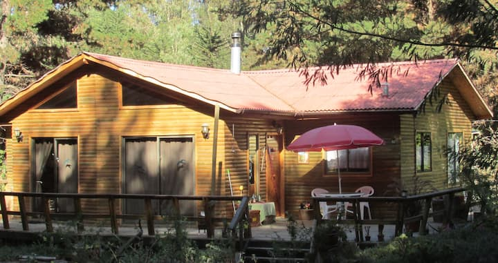 Ritoque: Large Cabin 5 min from the beach