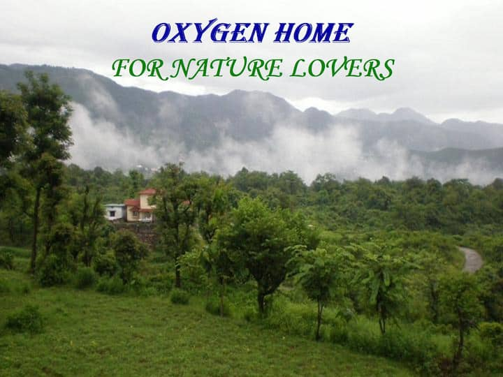 Oxygen-Cozy Green View Room