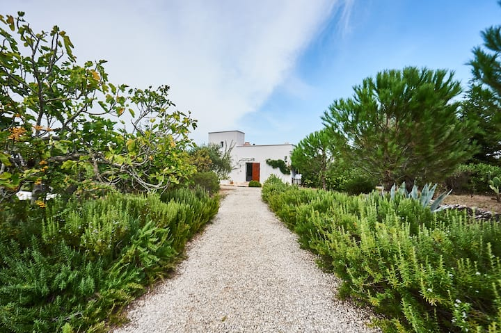 Villa between Ostuni and the sea