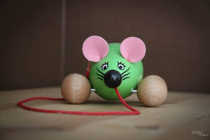 gite de la souris verte***