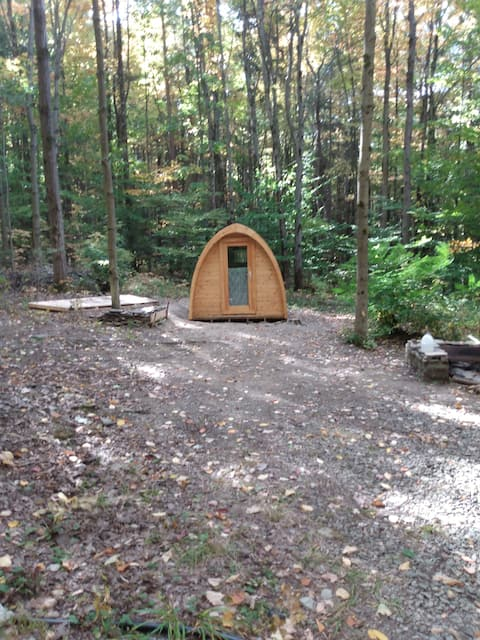 Camping Pod: in Beautiful Forest Campsite