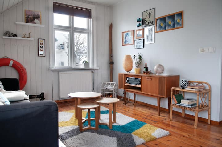 Cosy Apartment downtown Reykjavik