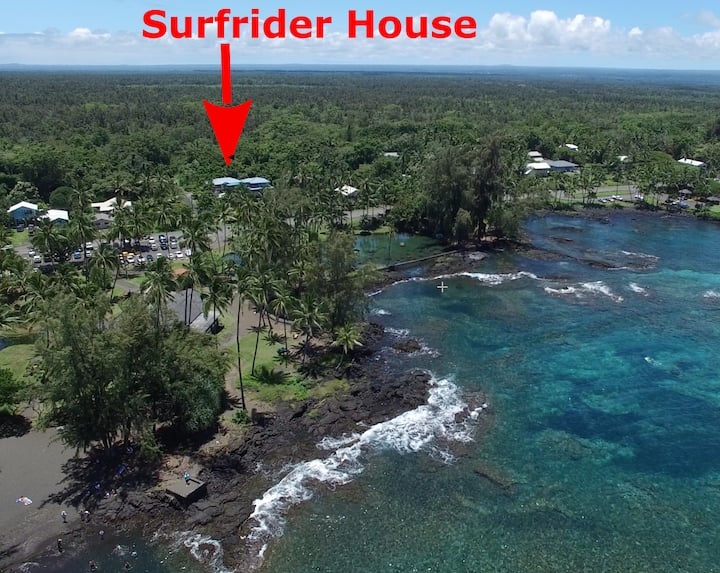 Best Hilo Beach Area. Swim w/Turtles
