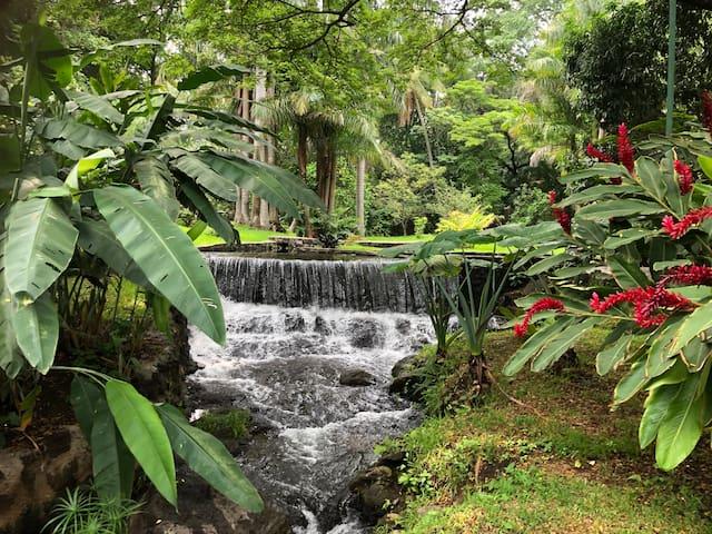 Thermal Paradise Villa  Naturaleza!
