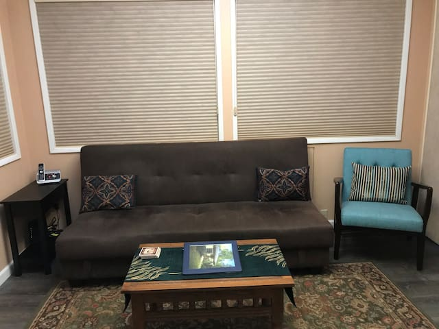Living room/TV room with fold out futon
