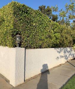 Sidewalk and driveway