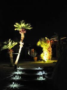 Illuminated pathway to house.