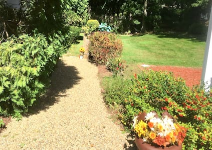 Walkway from driveway.
