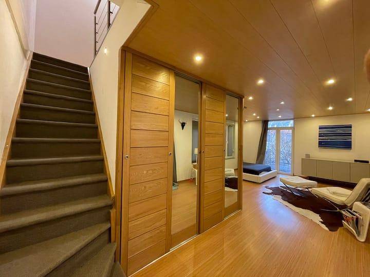 Duplex atypique et confortable Mulhouse centre