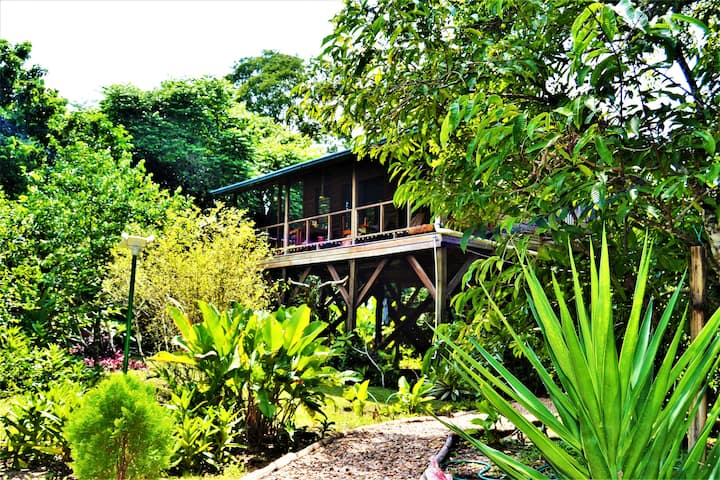Sanpopo Equipped Tree Top Home  In Tropical Garden