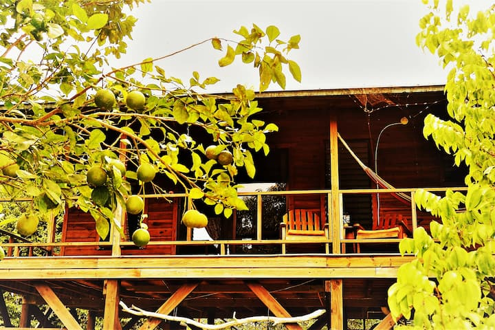 Sanpopo Cottage A Fully Equipped Tree Top Home