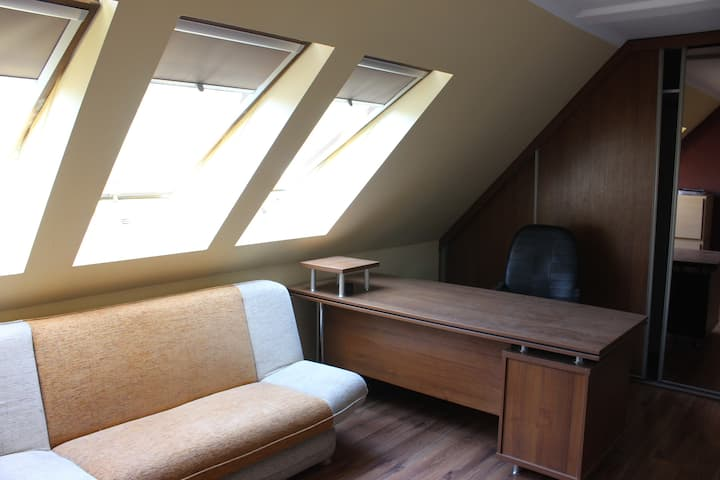 spacious room in the attic