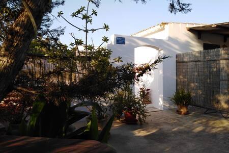 """Estudio Exterior en Sant Francesc - """"Llebeig"""""""