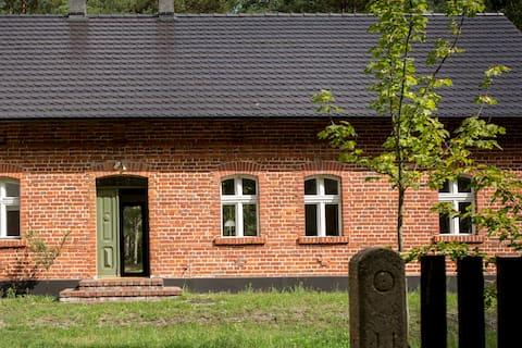 Dom w lesie - Skromny las