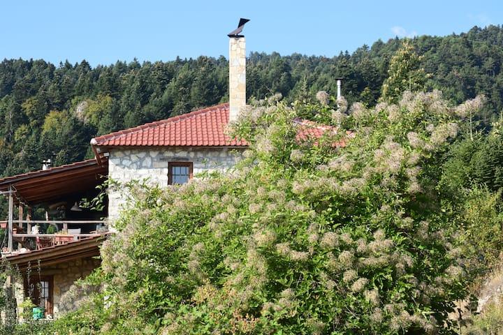 Arli House - Trikala Korinthias