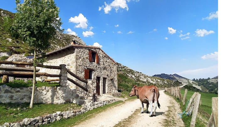 Hut in the top of the Picos de Europa