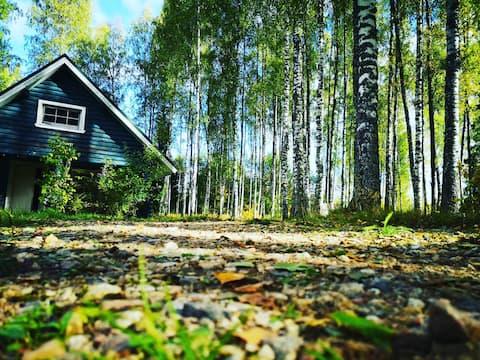 森林精靈生態屋