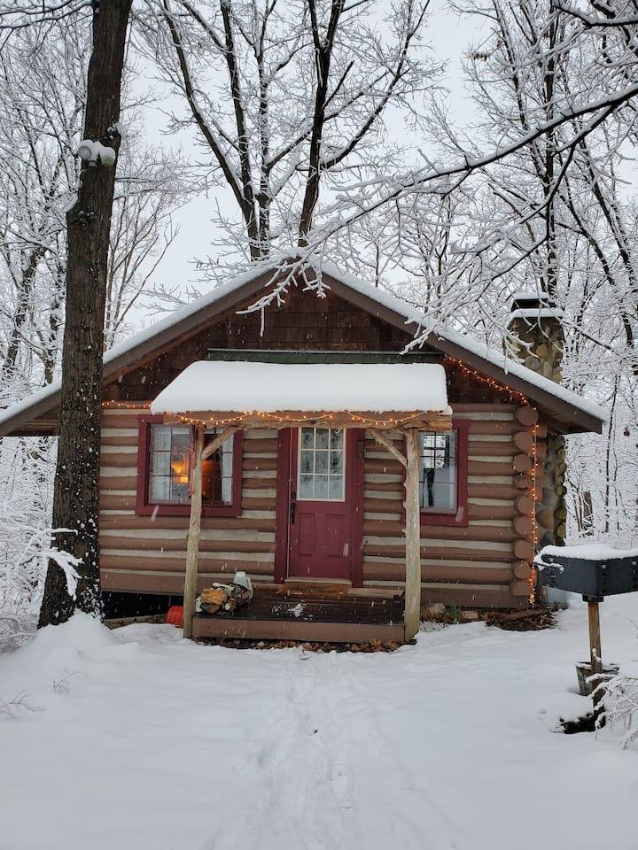 Pine Log Cabin