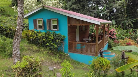 Jungle Escape Eco Lodge, and Waterfalls NOW OPEN