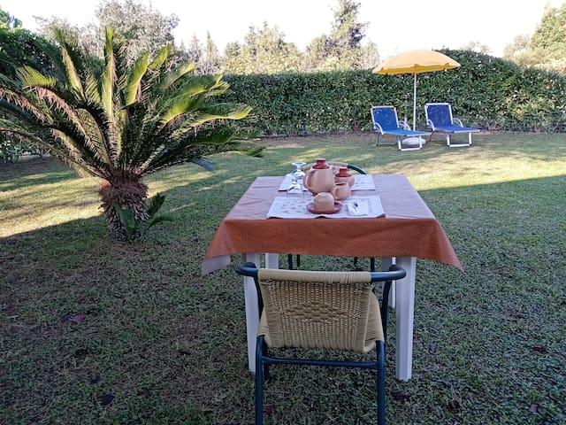 Home Garden - Casa Giardino