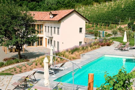 The house in the vineyard