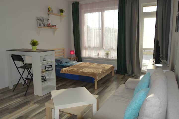 Cozy, sunny apartment, park and close to airport