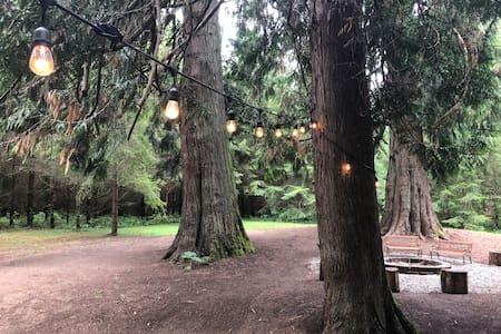 Camp area is lit
