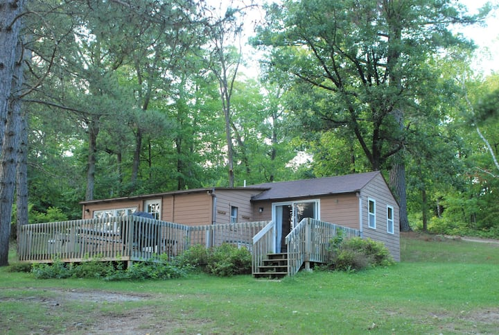 Cabin in Towering Pines on a quiet Lake. PETS ok!