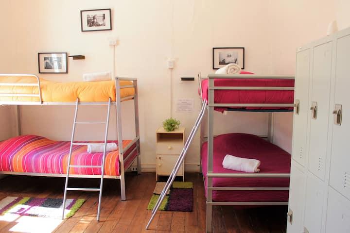 Excellent 4 Beds Mixed Dorm in Cerro Concepción