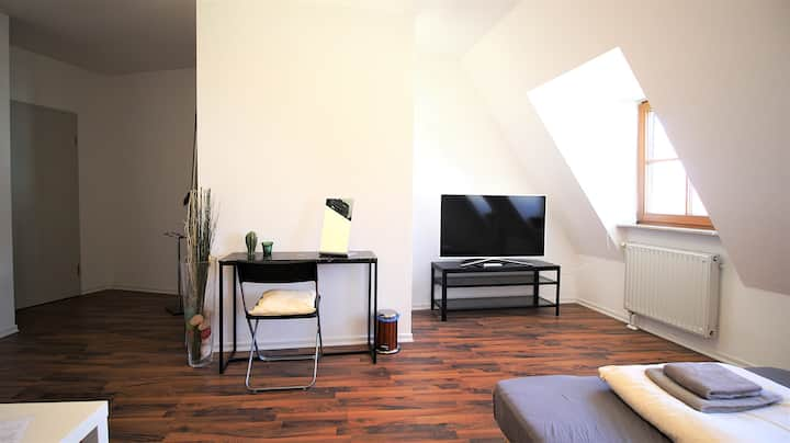 Room in penthouse apartment in the city centre (1)