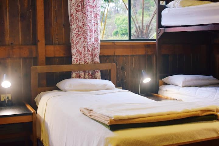 Room #14 (Mixed Dormitory) | Holoholo Inn