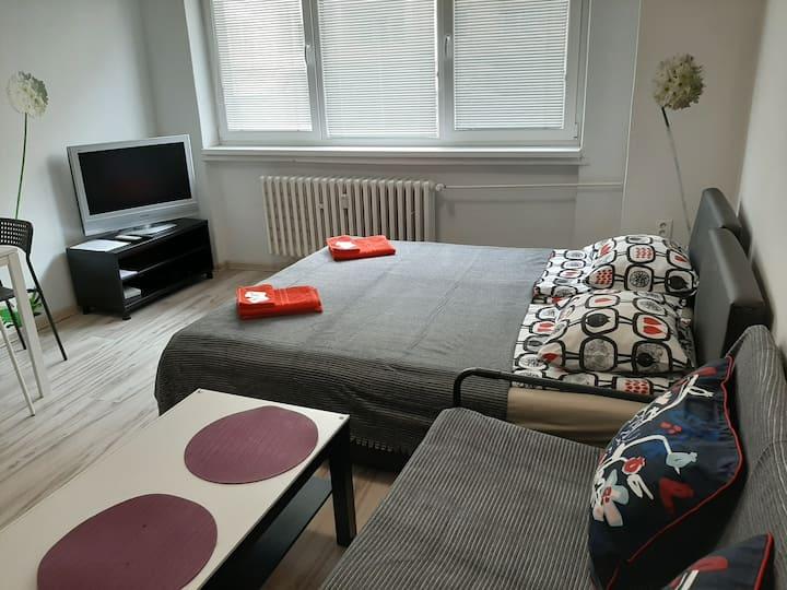 Apartment Aktiv-Old citi Bratislava