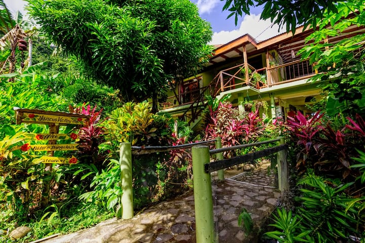 Coco room at Hibiscus Valley COMFORT and  PRIVAT