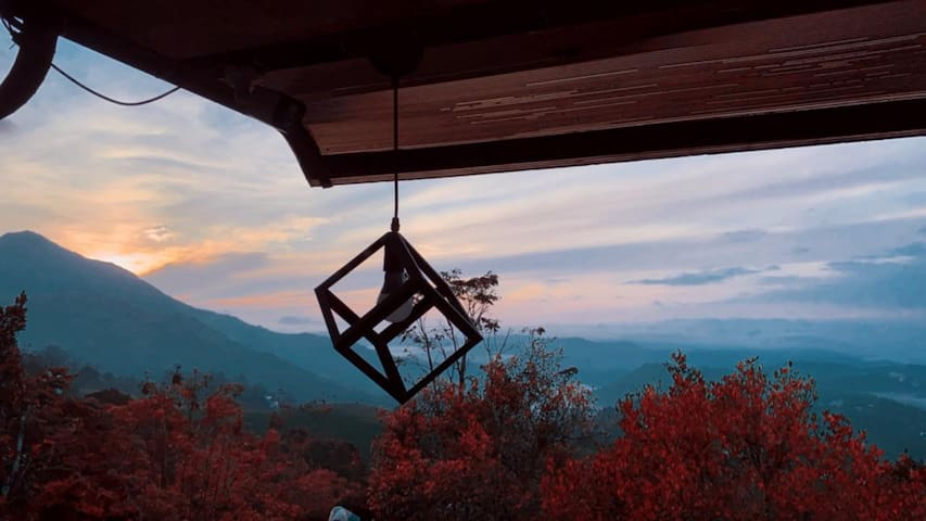 Tea Plantation & Valley View Room