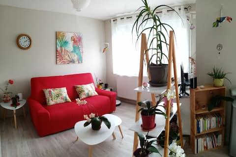 Chambre dans appartement calme vue Pyrénées