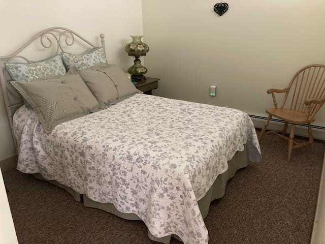 This is a queen bed. There are extra linens for the pull-out couch in the living room and plenty of blankets for our guests coming from warmer climates. There is a large closet in the bedroom as well as one in the main living area