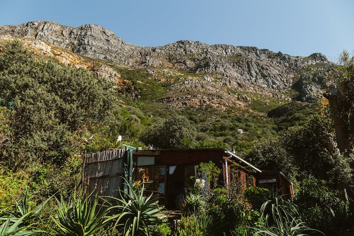 Cape Point Cottage